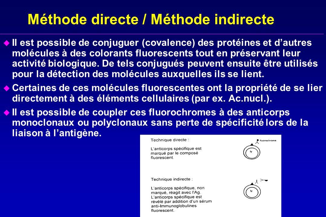 Méthode directe / Méthode indirecte u Il est possible de conjuguer (covalence) des protéines et dautres molécules à des colorants fluorescents tout en