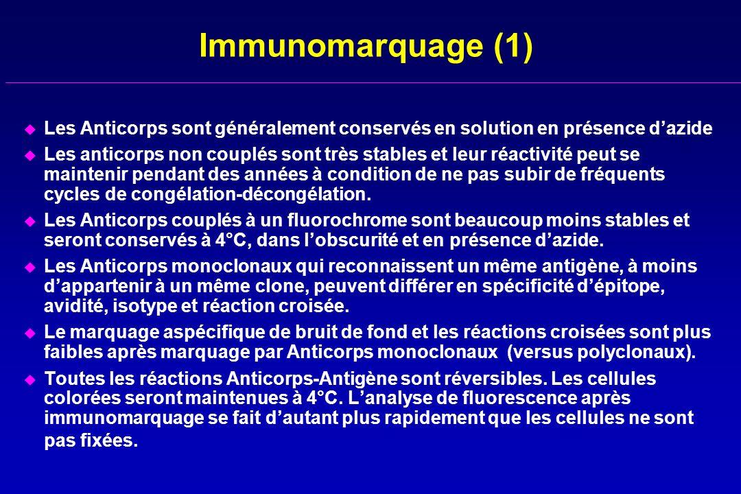 Immunomarquage (1) u Les Anticorps sont généralement conservés en solution en présence dazide u Les anticorps non couplés sont très stables et leur ré