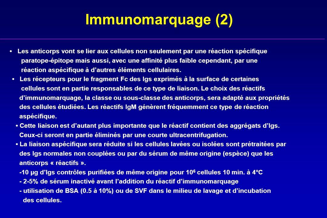 Immunomarquage (2) Les anticorps vont se lier aux cellules non seulement par une réaction spécifique paratope-épitope mais aussi, avec une affinité pl