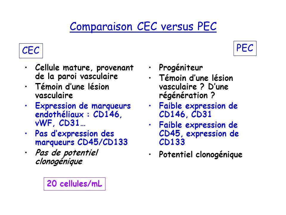 Comparaison CEC versus PEC Cellule mature, provenant de la paroi vasculaire Témoin dune lésion vasculaire Expression de marqueurs endothéliaux : CD146