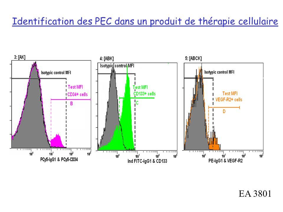 Identification des PEC dans un produit de thérapie cellulaire EA 3801