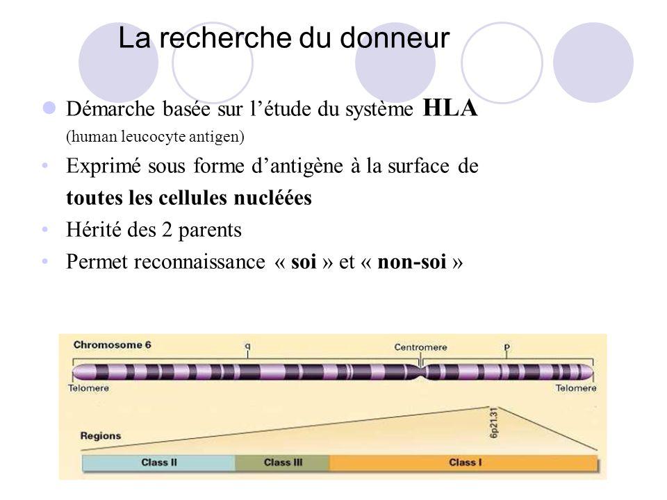 La recherche du donneur Démarche basée sur létude du système HLA (human leucocyte antigen) Exprimé sous forme dantigène à la surface de toutes les cellules nucléées Hérité des 2 parents Permet reconnaissance « soi » et « non-soi »