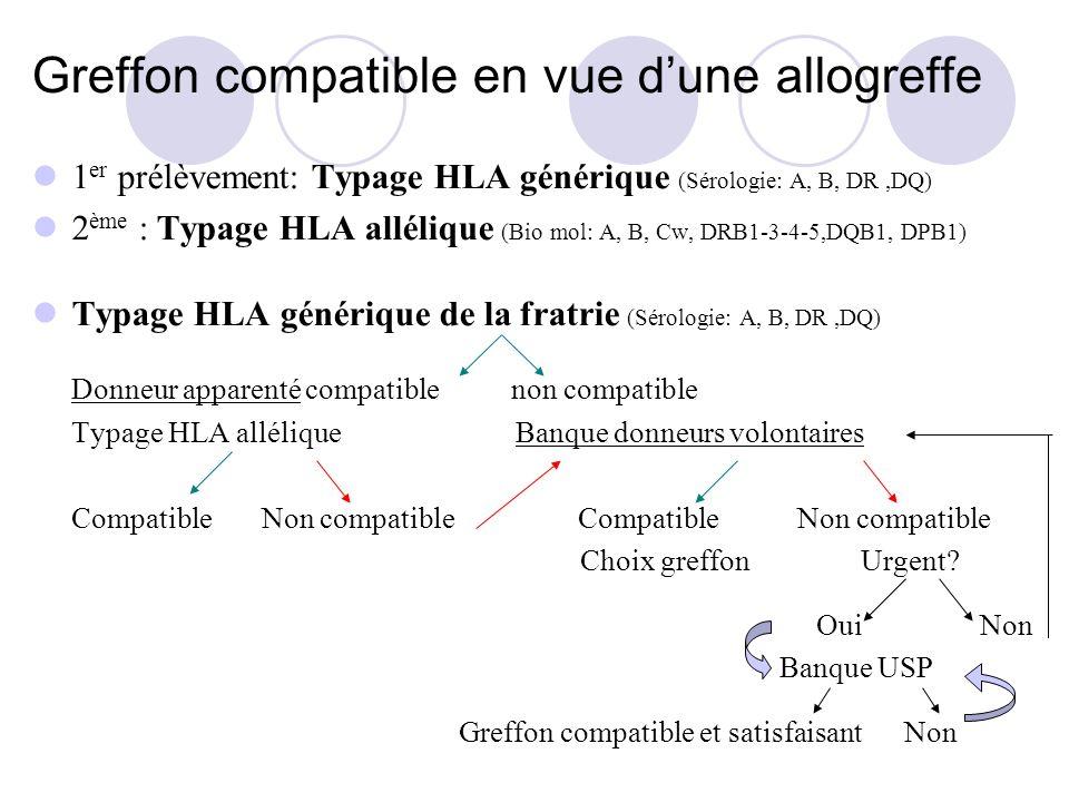 Greffon compatible en vue dune allogreffe 1 er prélèvement: Typage HLA générique (Sérologie: A, B, DR,DQ) 2 ème : Typage HLA allélique (Bio mol: A, B, Cw, DRB1-3-4-5,DQB1, DPB1) Typage HLA générique de la fratrie (Sérologie: A, B, DR,DQ) Donneur apparenté compatible non compatible Typage HLA allélique Banque donneurs volontaires Compatible Non compatible Choix greffon Urgent.