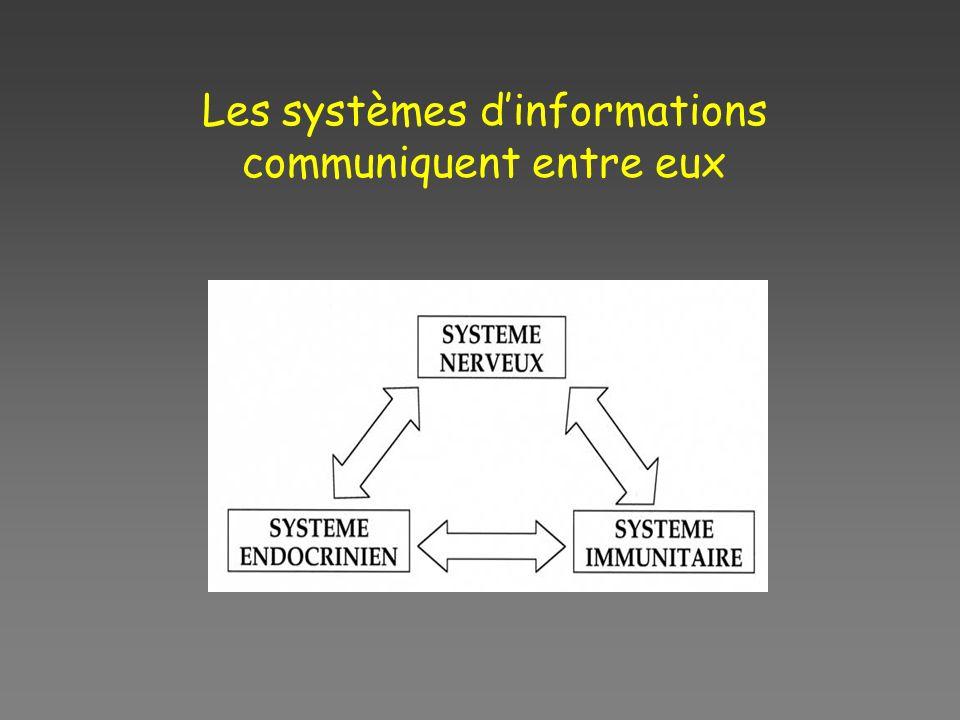 Les systèmes dinformations communiquent entre eux