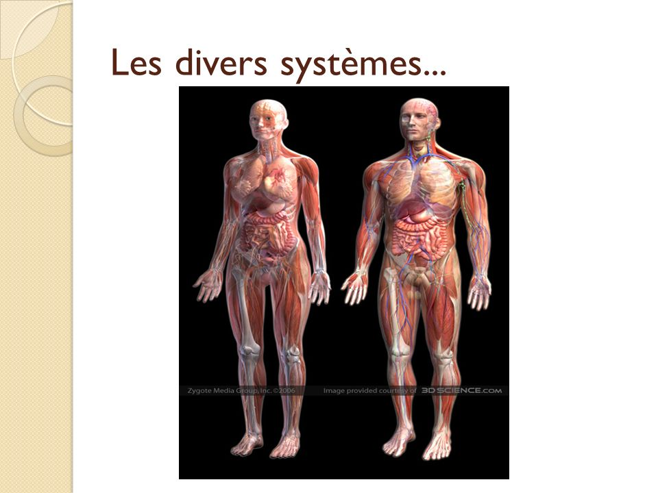Les divers systèmes...