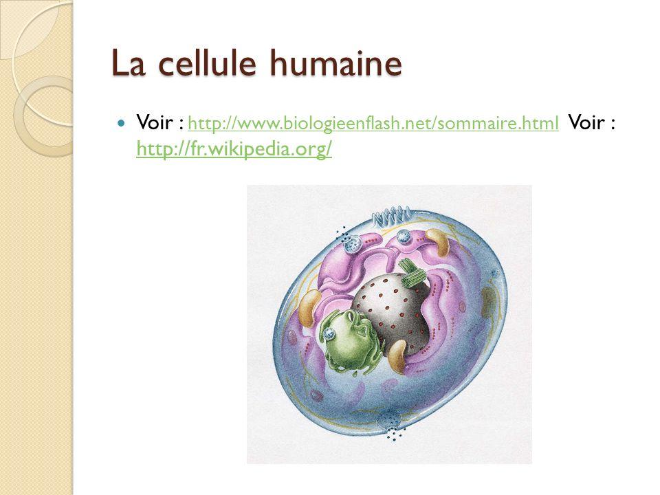 La cellule humaine Voir : http://www.biologieenflash.net/sommaire.html Voir : http://fr.wikipedia.org/ http://www.biologieenflash.net/sommaire.html ht