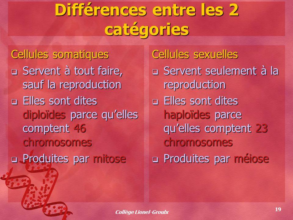 Collège Lionel-Groulx 19 Différences entre les 2 catégories Cellules somatiques Servent à tout faire, sauf la reproduction Servent à tout faire, sauf