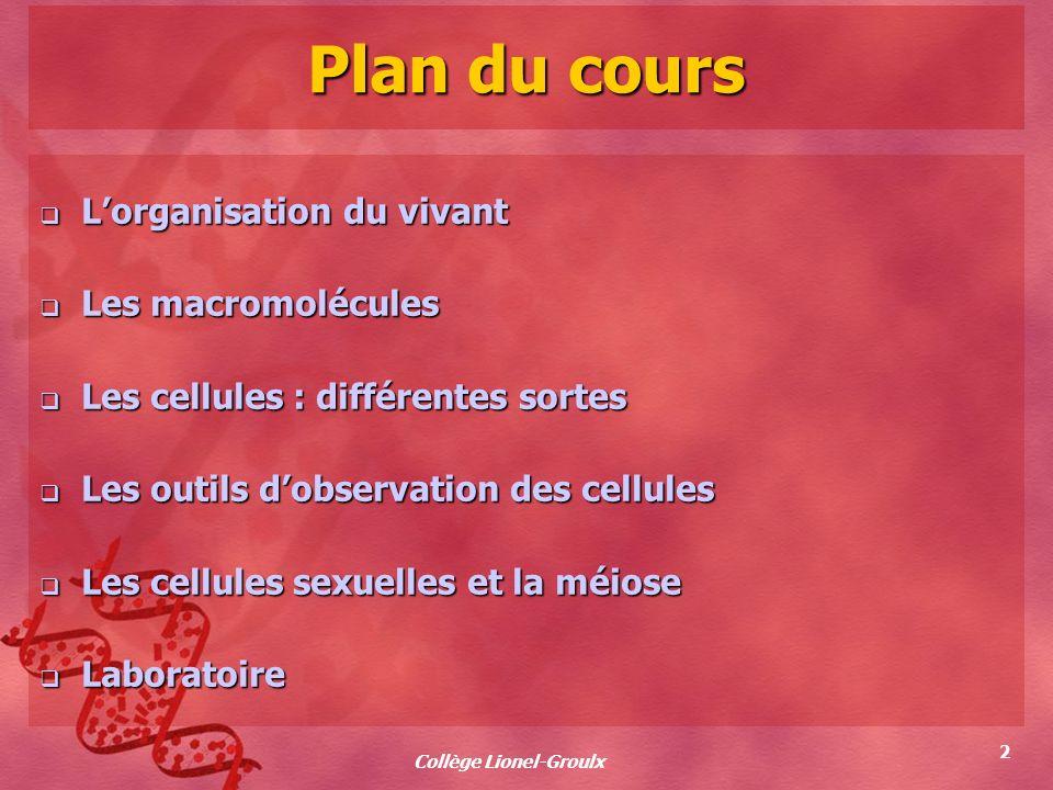 Collège Lionel-Groulx 2 Plan du cours Lorganisation du vivant Lorganisation du vivant Les macromolécules Les macromolécules Les cellules : différentes