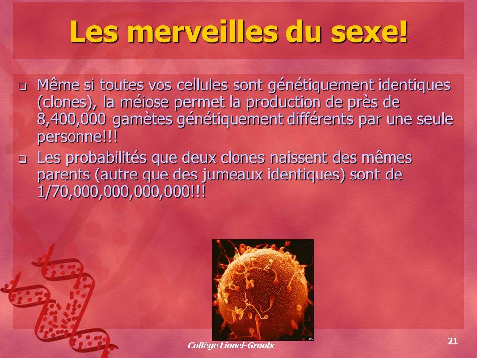 Collège Lionel-Groulx 21 Les merveilles du sexe! Même si toutes vos cellules sont génétiquement identiques (clones), la méiose permet la production de