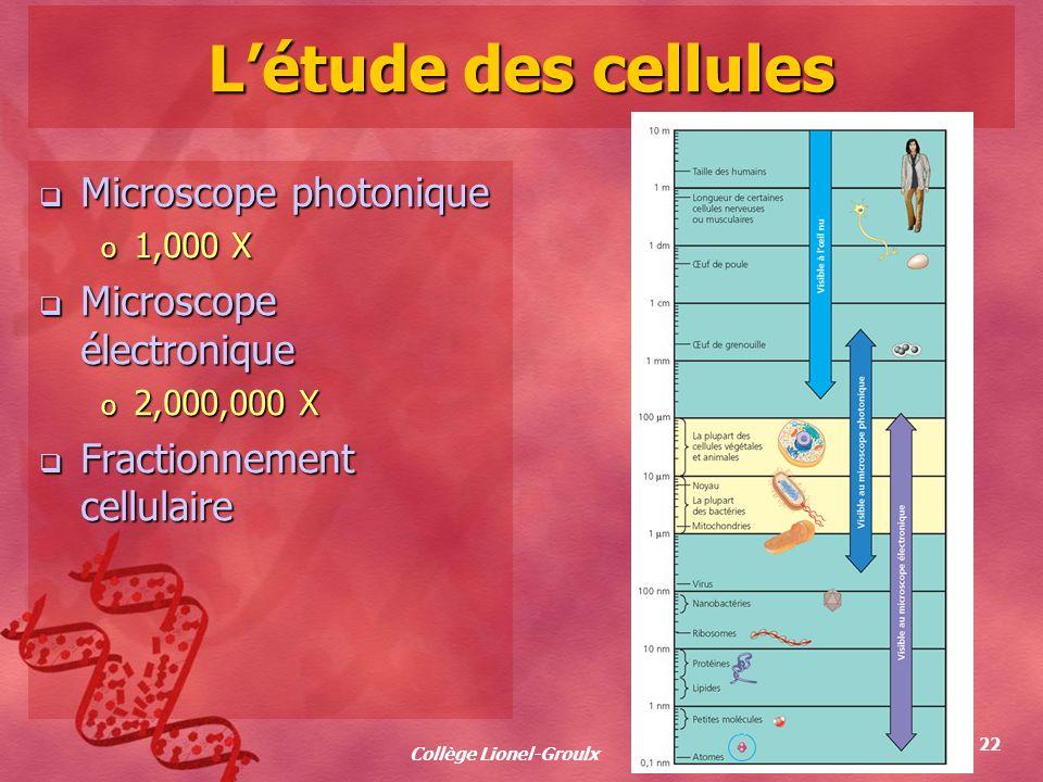 Collège Lionel-Groulx 22 Létude des cellules Microscope photonique Microscope photonique o 1,000 X Microscope électronique Microscope électronique o 2