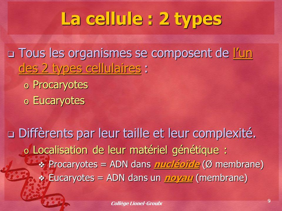 Collège Lionel-Groulx 9 La cellule : 2 types Tous les organismes se composent de lun des 2 types cellulaires : Tous les organismes se composent de lun