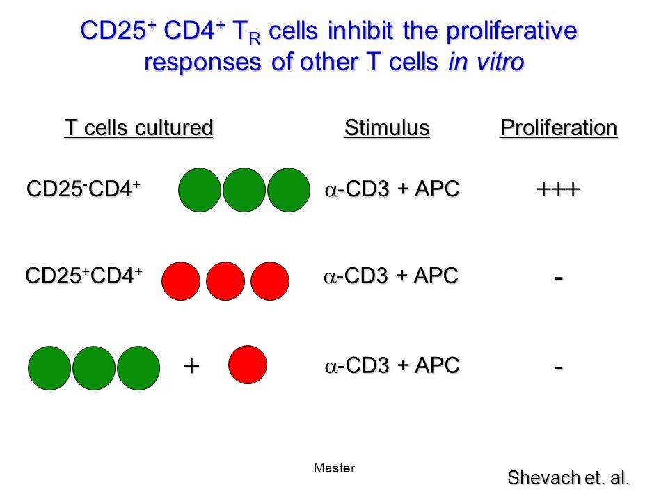 Master CD25 + CD4 + T R cells inhibit the proliferative responses of other T cells in vitro T cells cultured StimulusProliferation +++ CD25 - CD4 + -CD3 + APC -CD3 + APC - CD25 + CD4 + -CD3 + APC -CD3 + APC + - Shevach et.