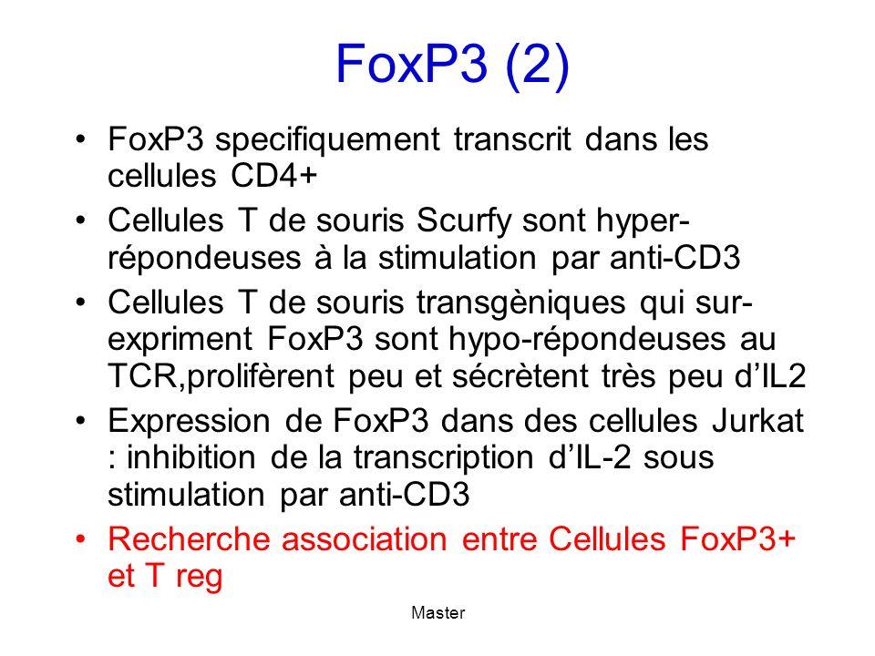 FoxP3 specifiquement transcrit dans les cellules CD4+ Cellules T de souris Scurfy sont hyper- répondeuses à la stimulation par anti-CD3 Cellules T de souris transgèniques qui sur- expriment FoxP3 sont hypo-répondeuses au TCR,prolifèrent peu et sécrètent très peu dIL2 Expression de FoxP3 dans des cellules Jurkat : inhibition de la transcription dIL-2 sous stimulation par anti-CD3 Recherche association entre Cellules FoxP3+ et T reg FoxP3 (2)