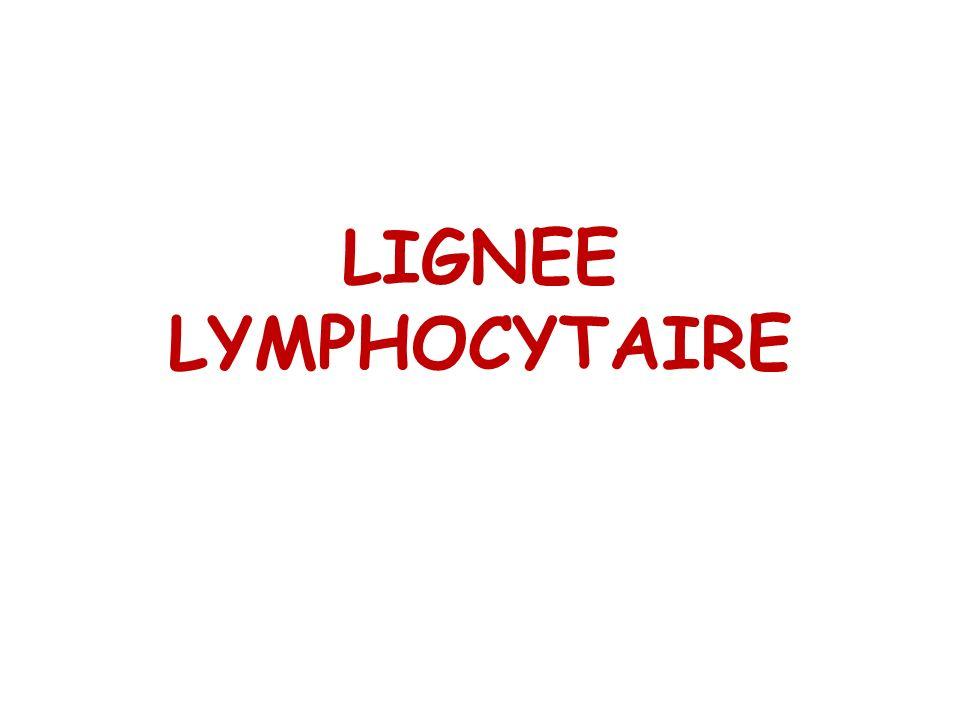 III- LYMPHOPOÏÈSE 1.Lymphopoïèse T: Cellule souche pluripotente cellule souche lymphoïde pré T Thymus.