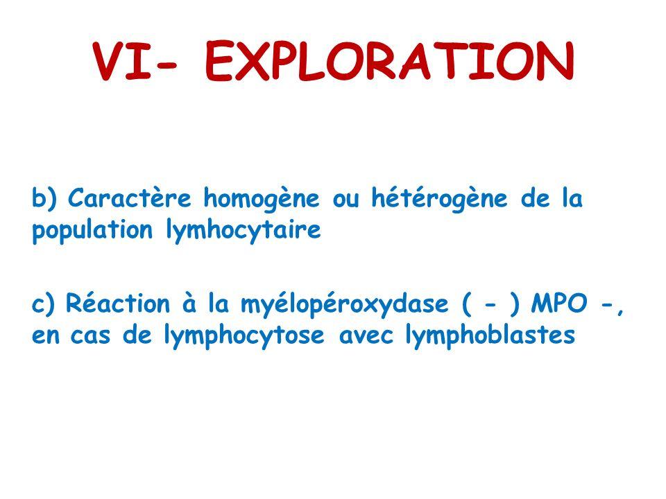 VI- EXPLORATION b) Caractère homogène ou hétérogène de la population lymhocytaire c) Réaction à la myélopéroxydase ( - ) MPO -, en cas de lymphocytose avec lymphoblastes