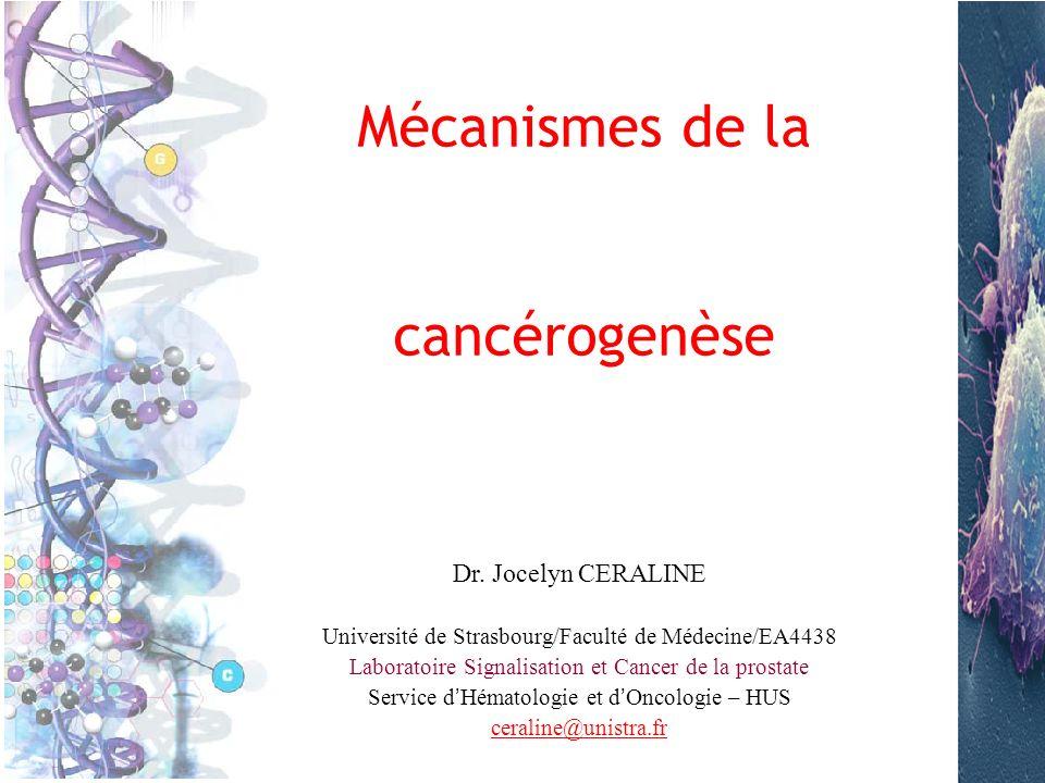 Objectifs du cours Connaître les différents concepts expliquant la genèse dune cellule cancéreuse, la progression tumorale et la résistance thérapeutique Comprendre les mécanismes ou évènements moléculaires, cellulaires et tissulaires conduisant à la cancérogenèse.
