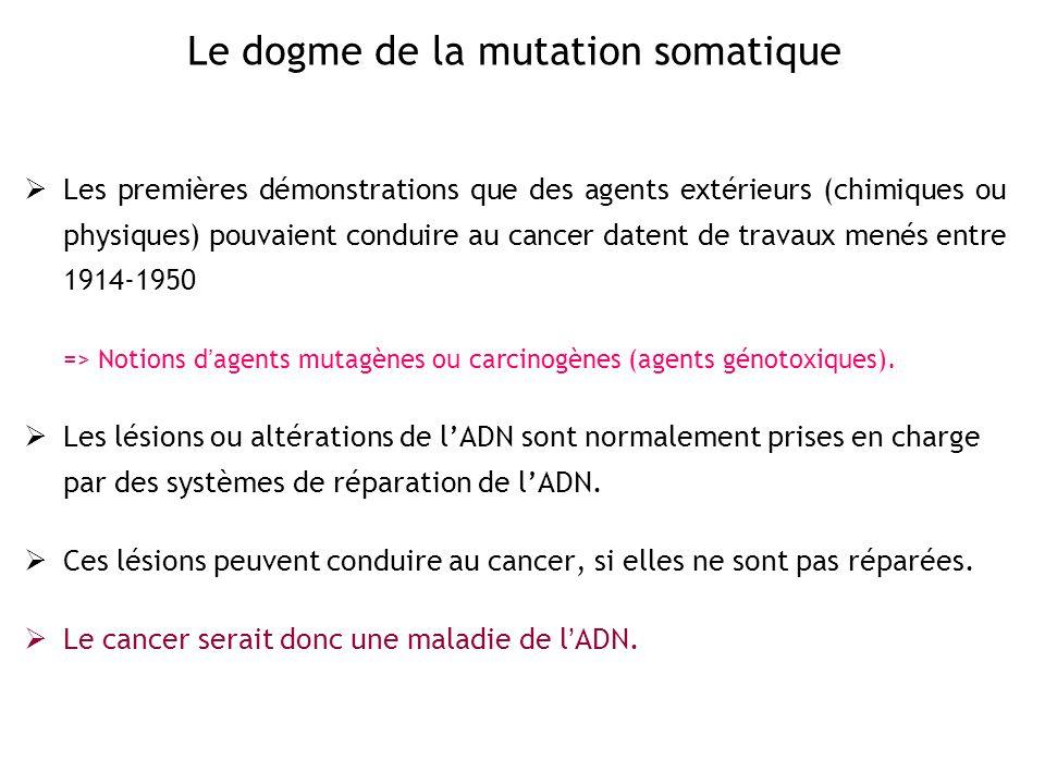 Absence de transcription de gènes suppresseurs de tumeur Méthylation de promoteurs Prolifération des cellules cancéreuses