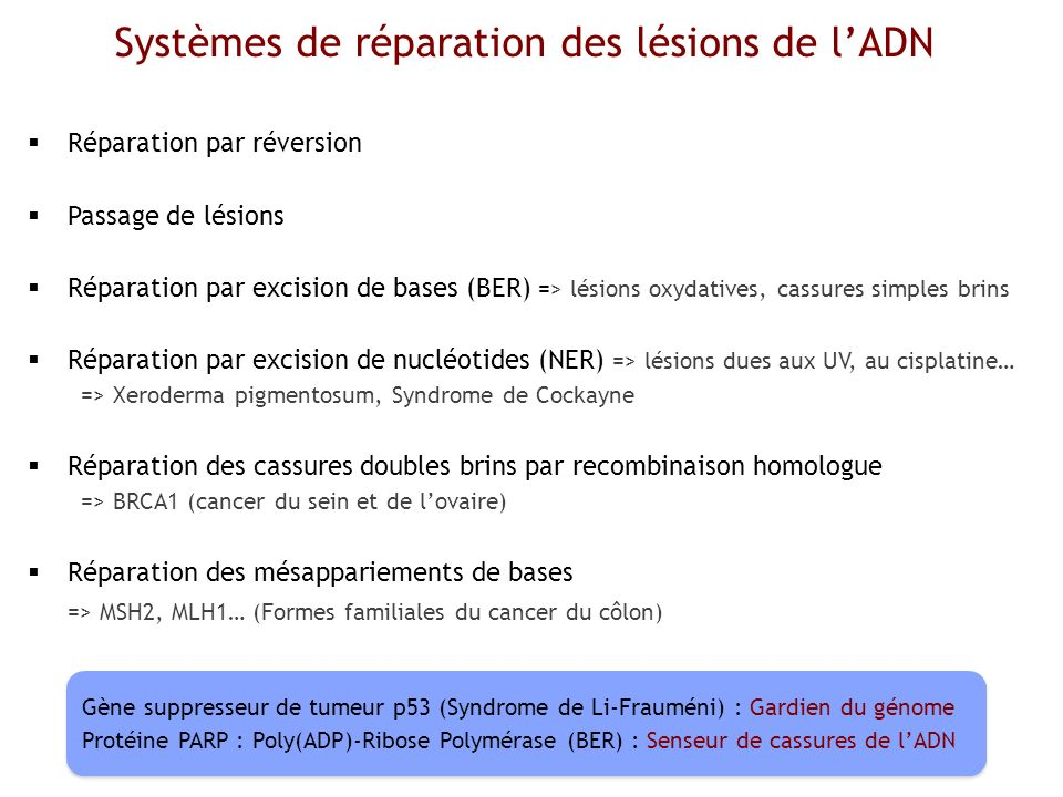 Sarcomes dEwing Origine mésenchymateuse des tumeurs dEwing Tirode et al., 2008; M/S n°3.