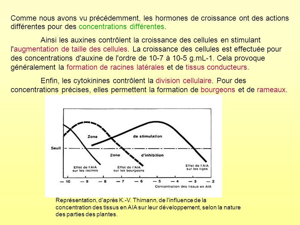 Représentation, d'après K.-V. Thimann, de l'influence de la concentration des tissus en AIA sur leur développement, selon la nature des parties des pl