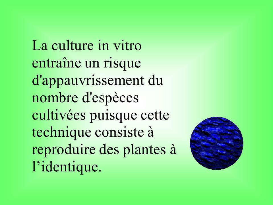La culture in vitro entraîne un risque d'appauvrissement du nombre d'espèces cultivées puisque cette technique consiste à reproduire des plantes à lid