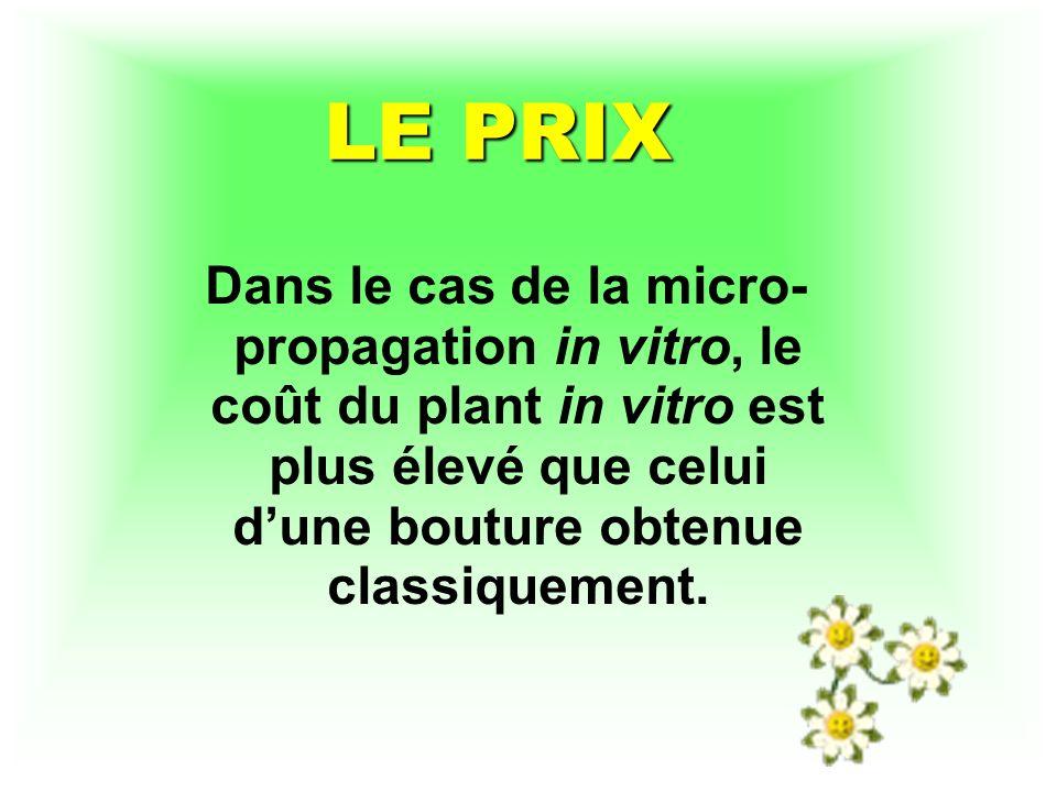 LE PRIX Dans le cas de la micro- propagation in vitro, le coût du plant in vitro est plus élevé que celui dune bouture obtenue classiquement.