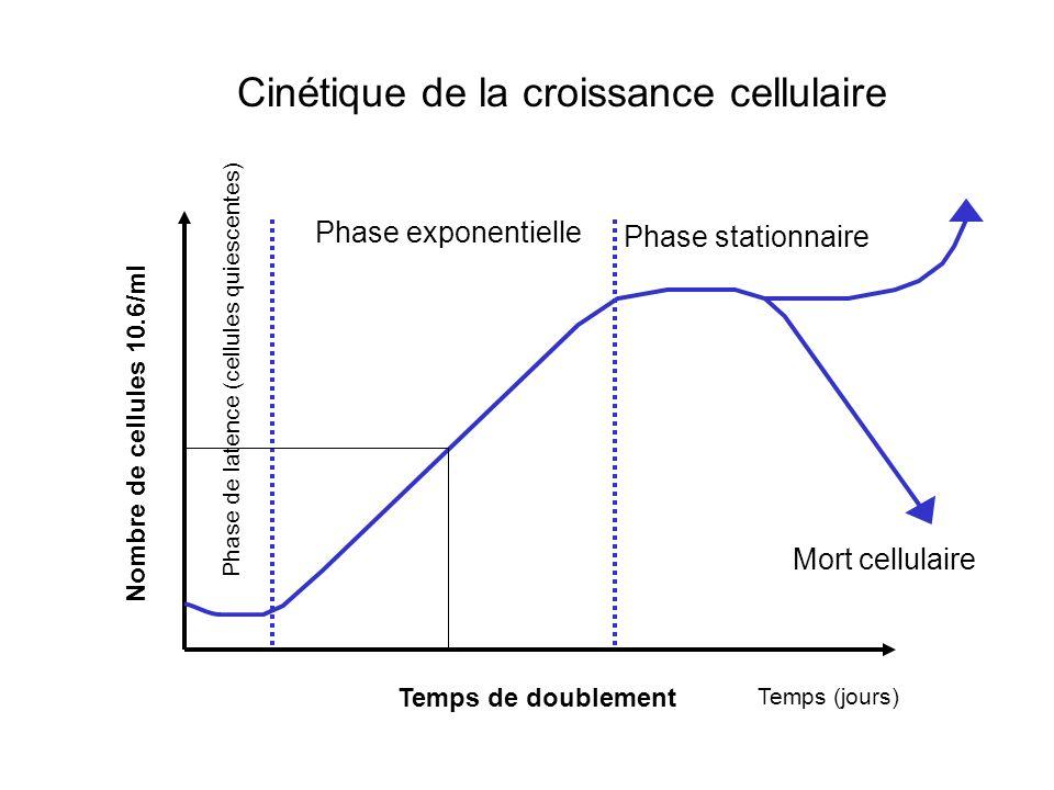 Cinétique de la croissance cellulaire Nombre de cellules 10.6/ml Temps (jours) Phase de latence (cellules quiescentes) Phase exponentielle Phase stationnaire Mort cellulaire Temps de doublement