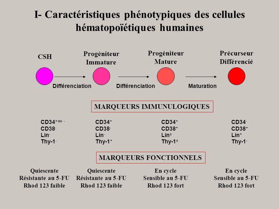 DifférenciationMaturationDifférenciation MARQUEURS IMMUNULOGIQUES MARQUEURS FONCTIONNELS CSH CD34 + ou - CD38 - Lin - Thy-1 - Quiescente Résistante au