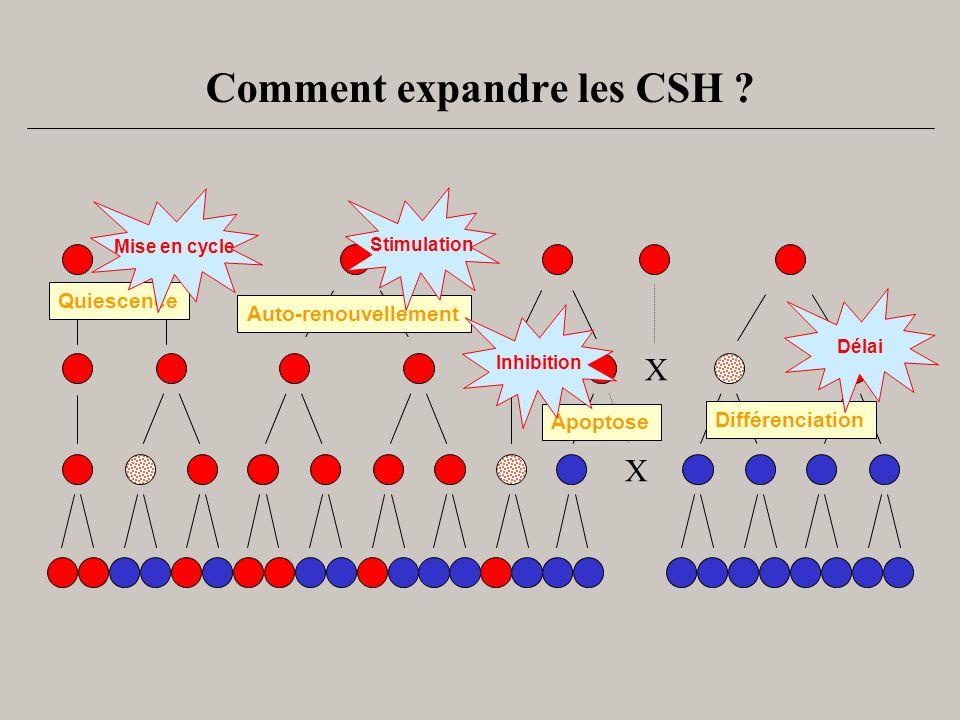 Comment expandre les CSH ? X X Quiescence Auto-renouvellement Différenciation Apoptose Délai Inhibition Stimulation Mise en cycle