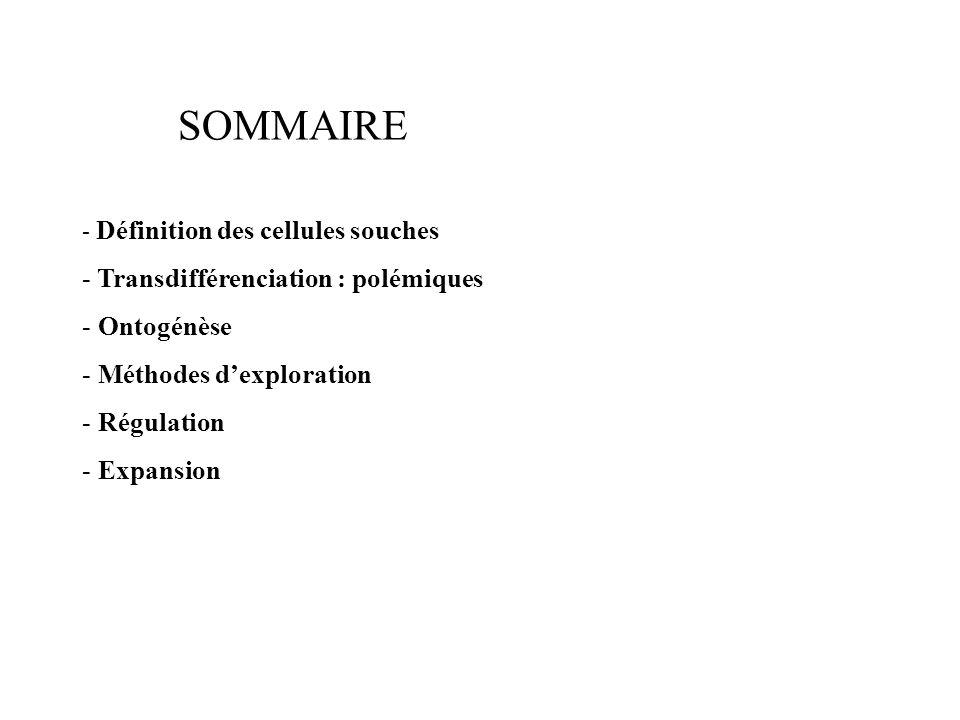 SOMMAIRE - Définition des cellules souches - Transdifférenciation : polémiques - Ontogénèse - Méthodes dexploration - Régulation - Expansion