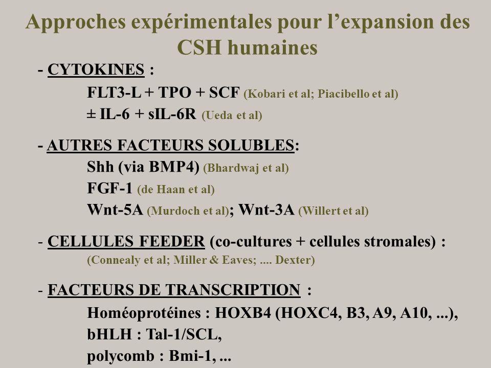 Approches expérimentales pour lexpansion des CSH humaines - CYTOKINES : FLT3-L + TPO + SCF (Kobari et al; Piacibello et al) ± IL-6 + sIL-6R (Ueda et a