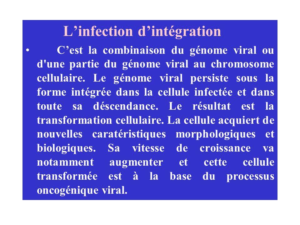 Linfection dintégration Cest la combinaison du génome viral ou d'une partie du génome viral au chromosome cellulaire. Le génome viral persiste sous la