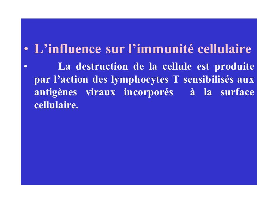 Linfluence sur limmunité cellulaire La destruction de la cellule est produite par laction des lymphocytes T sensibilisés aux antigènes viraux incorpor