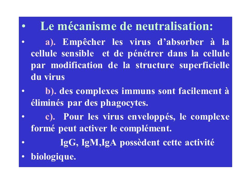 Le mécanisme de neutralisation: a). Empêcher les virus dabsorber à la cellule sensible et de pénétrer dans la cellule par modification de la structure