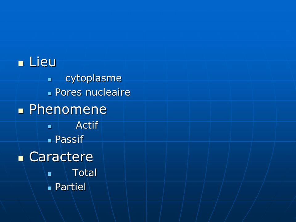 Lieu Lieu cytoplasme cytoplasme Pores nucleaire Pores nucleaire Phenomene Phenomene Actif Actif Passif Passif Caractere Caractere Total Total Partiel