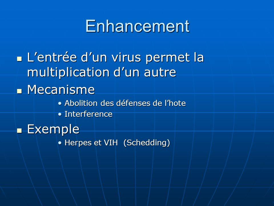 Enhancement Lentrée dun virus permet la multiplication dun autre Lentrée dun virus permet la multiplication dun autre Mecanisme Mecanisme Abolition de