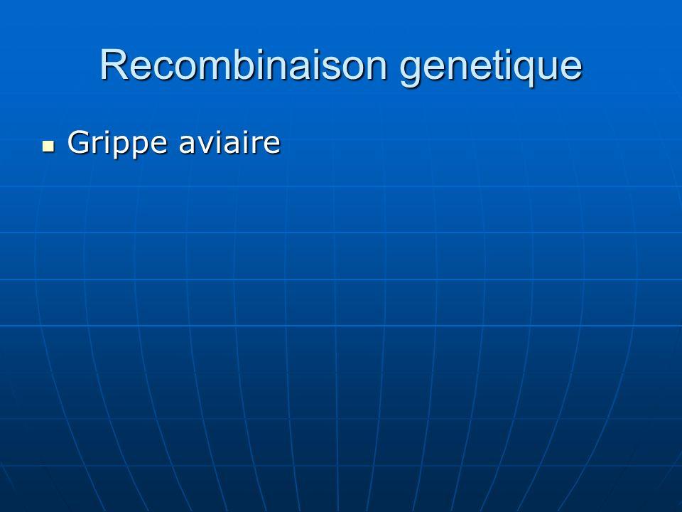 Recombinaison genetique Grippe aviaire Grippe aviaire