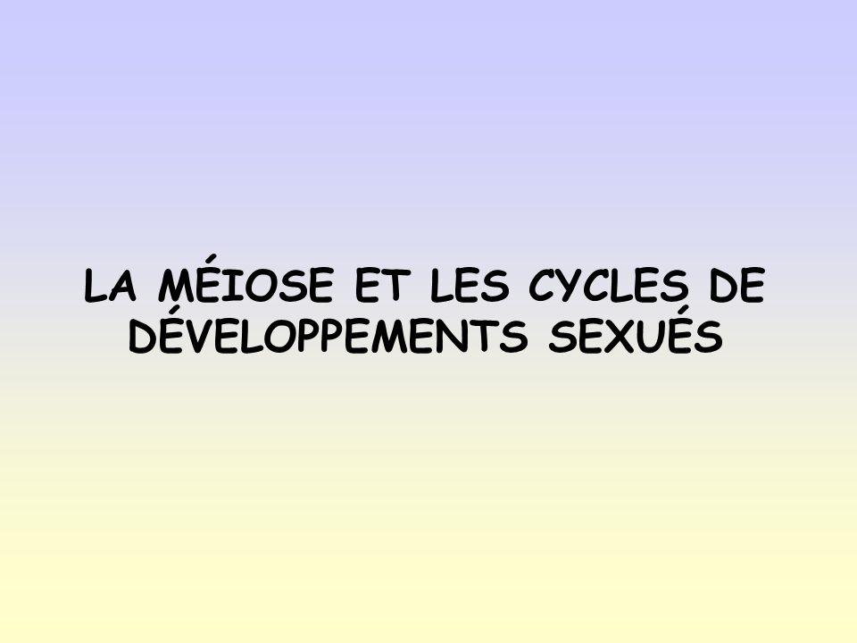 LA MÉIOSE ET LES CYCLES DE DÉVELOPPEMENTS SEXUÉS