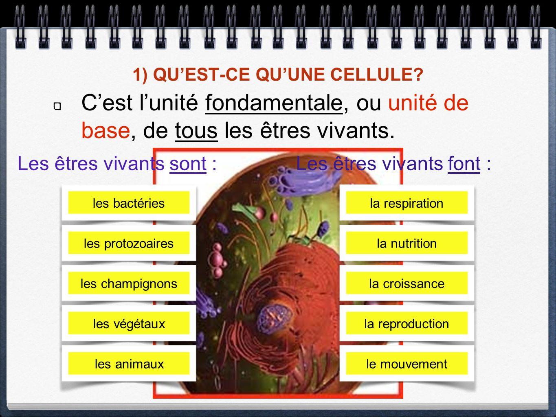1) QUEST-CE QUUNE CELLULE.Cest lunité fondamentale, ou unité de base, de tous les êtres vivants.