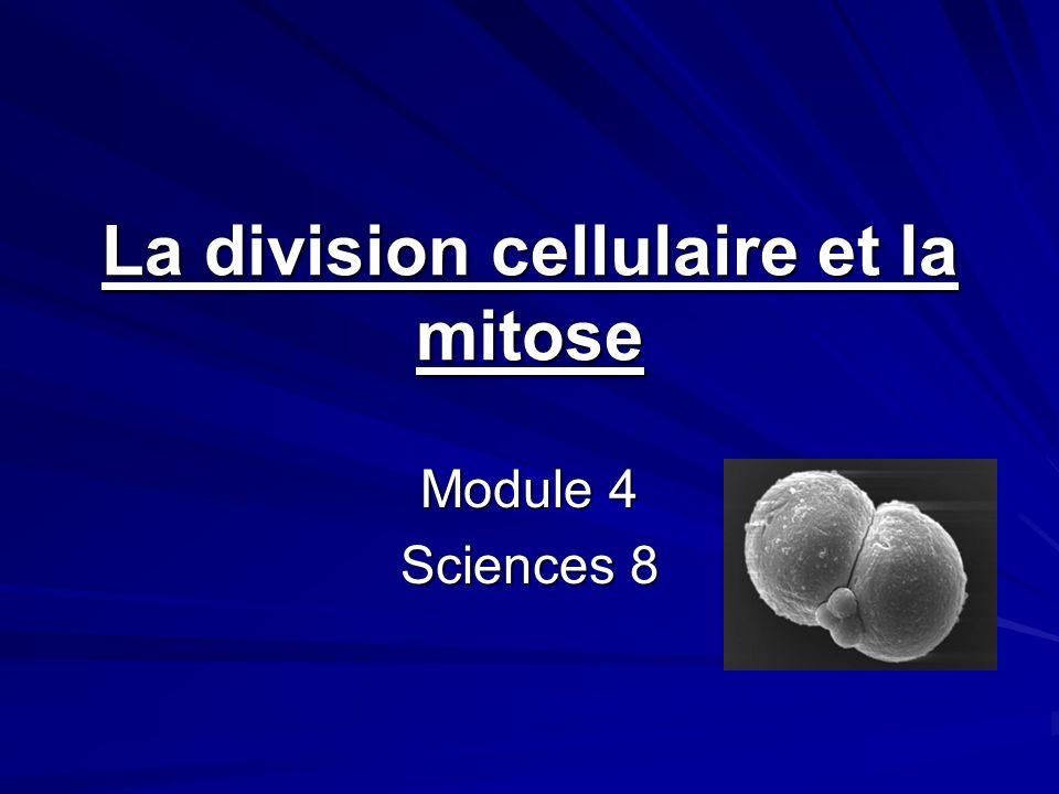 La division cellulaire et la mitose Module 4 Sciences 8