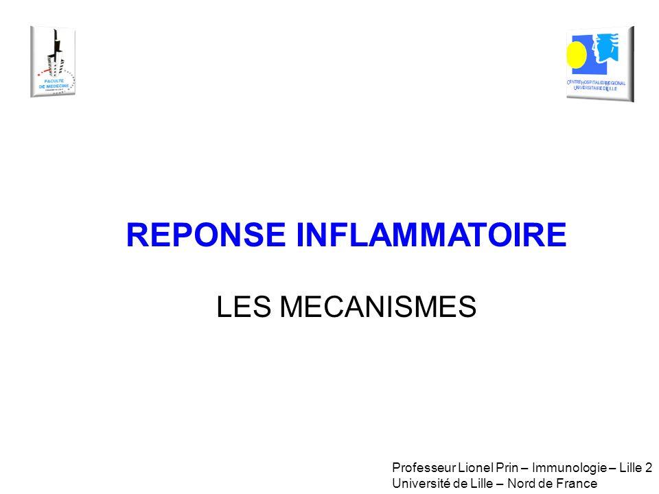 REPONSE INFLAMMATOIRE LES MECANISMES Professeur Lionel Prin – Immunologie – Lille 2 Université de Lille – Nord de France
