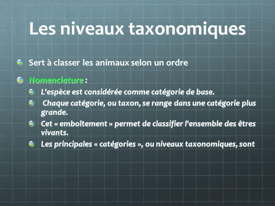Les niveaux taxonomiques Sert à classer les animaux selon un ordre Nomenclature : L'espèce est considérée comme catégorie de base. Chaque catégorie, o
