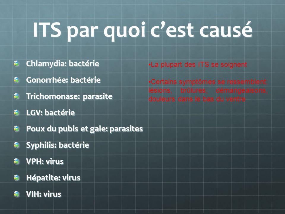 ITS par quoi cest causé Chlamydia: bactérie Gonorrhée: bactérie Trichomonase: parasite LGV: bactérie Poux du pubis et gale: parasites Syphilis: bactér