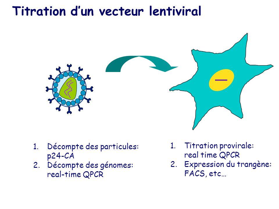 Titration dun vecteur lentiviral 1.Décompte des particules: p24-CA 2.Décompte des génomes: real-time QPCR 1.Titration provirale: real time QPCR 2.