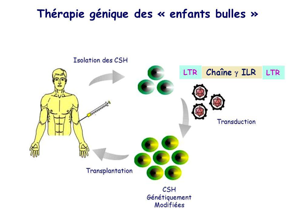 Transduction CSH Génétiquement Modifiées Isolation des CSH Transplantation Thérapie génique des « enfants bulles » Chaîne ILR LTR