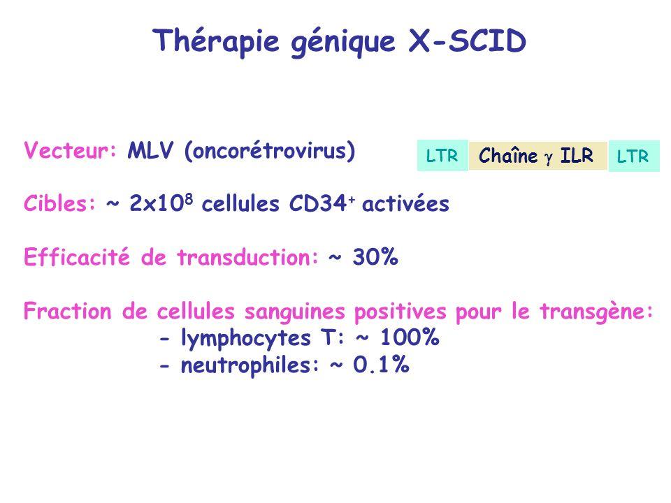 Thérapie génique X-SCID Vecteur: MLV (oncorétrovirus) Cibles: ~ 2x10 8 cellules CD34 + activées Efficacité de transduction: ~ 30% Fraction de cellules sanguines positives pour le transgène: - lymphocytes T: ~ 100% - neutrophiles: ~ 0.1% Chaîne ILR LTR