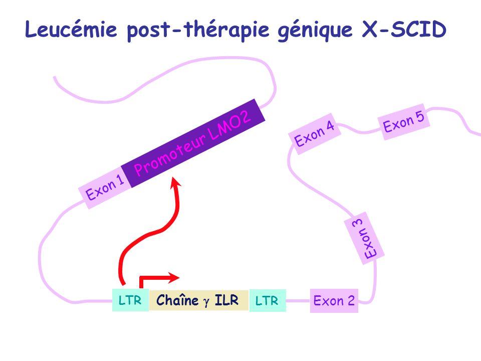 Promoteur LMO2 Leucémie post-thérapie génique X-SCID Chaîne ILR LTR Exon 2 Exon 4 Exon 3 Exon 5 Exon 1