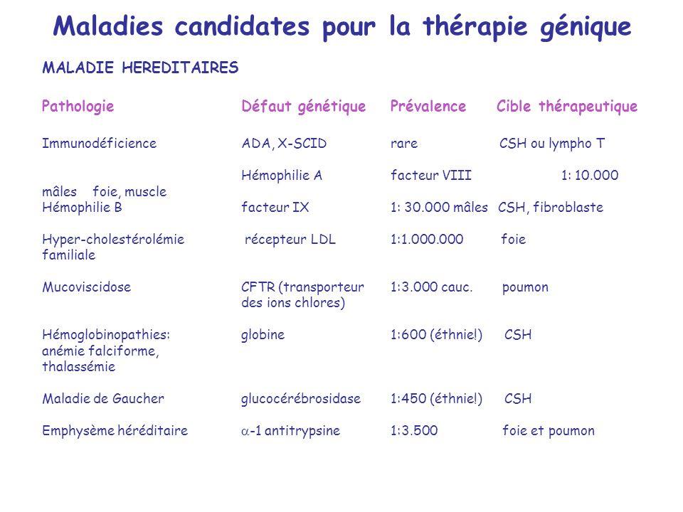 MALADIE HEREDITAIRES PathologieDéfaut génétiquePrévalence Cible thérapeutique ImmunodéficienceADA, X-SCIDrare CSH ou lympho T Hémophilie A facteur VIII1: 10.000 mâles foie, muscle Hémophilie B facteur IX1: 30.000 mâles CSH, fibroblaste Hyper-cholestérolémie récepteur LDL 1:1.000.000 foie familiale MucoviscidoseCFTR (transporteur1:3.000 cauc.