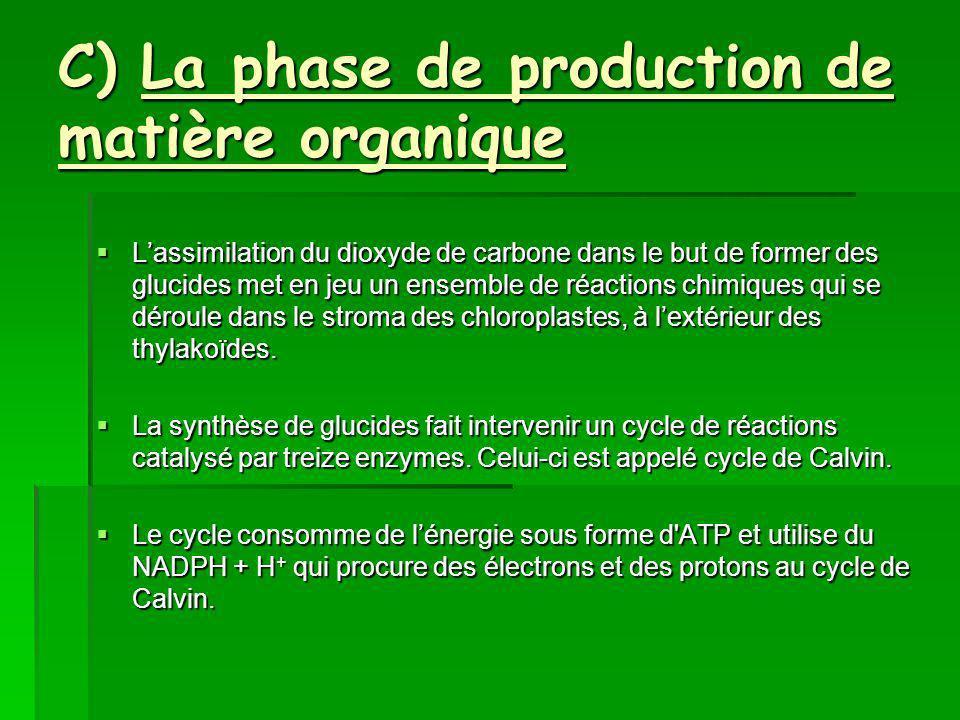 C) La phase de production de matière organique Lassimilation du dioxyde de carbone dans le but de former des glucides met en jeu un ensemble de réactions chimiques qui se déroule dans le stroma des chloroplastes, à lextérieur des thylakoïdes.