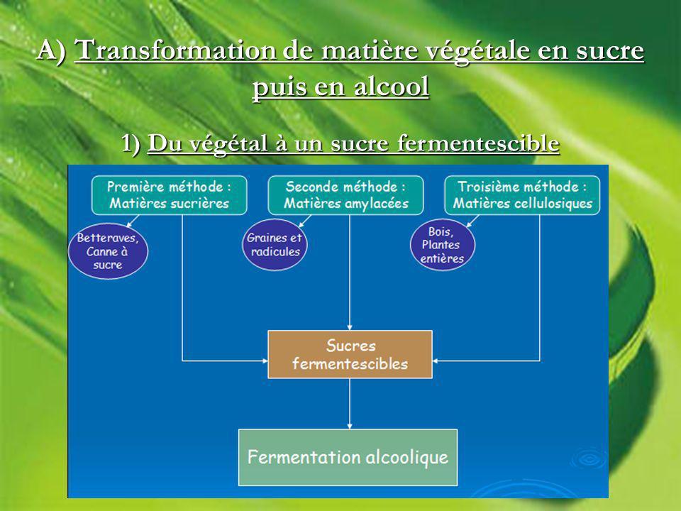 A) Transformation de matière végétale en sucre puis en alcool 1) Du végétal à un sucre fermentescible