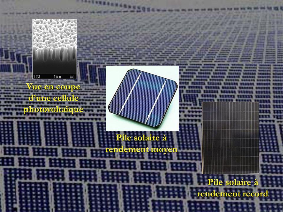 Vue en coupe dune cellule photovoltaïque Pile solaire à rendement moyen Pile solaire à rendement record